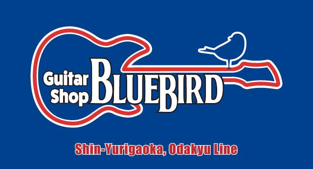 bluebird バナー